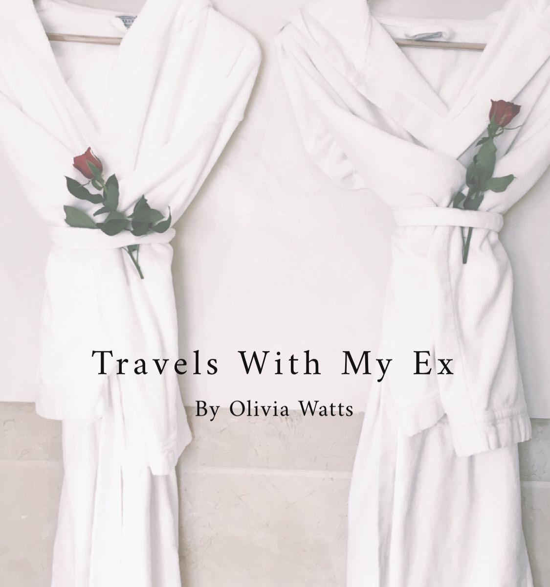 travels with my ex